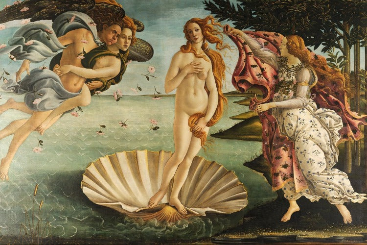 Botticeli - Birth of Venus poster - egoamo.co.za