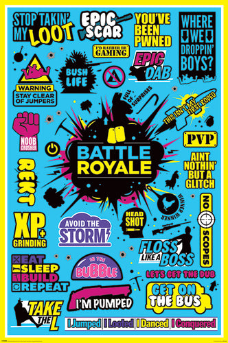 Fortnite - Battle Royale Infographic Poster - egoamo.co.za