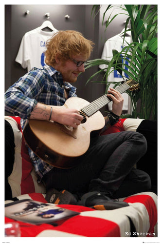 Ed Sheeran - Behind the Scenes at Wembly Poster