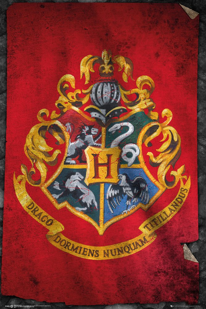 Harry Potter - Hogwarts Flag Poster - egoamo.co.za
