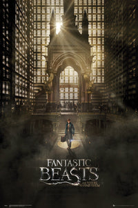 Fantastic Beasts And Where To Find Them Poster - egoamo.co.za