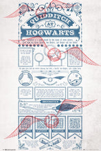 Harry Potter - Quidditch at Hogwarts - Poster - egoamo.co.za