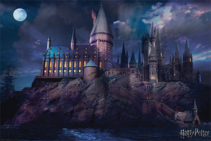 Harry Potter - Hogwarts Poster - egoamo.co.za