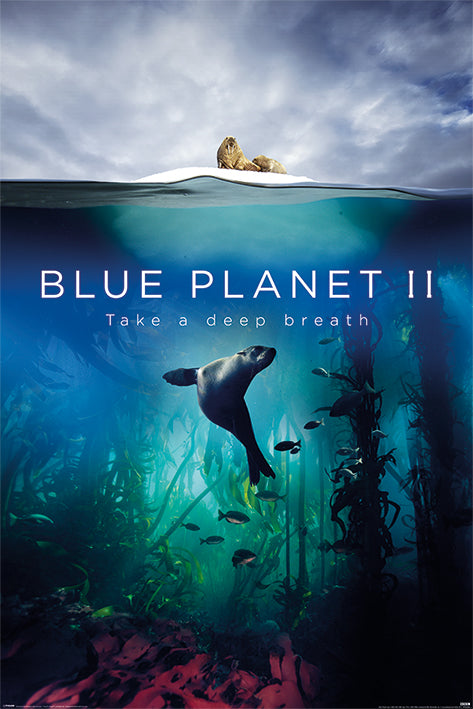 BBC - Blue Planet 2 Poster - egoamo.co.za