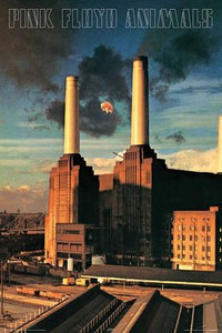Pink Floyd - Animals Poster - egoamo.co.za