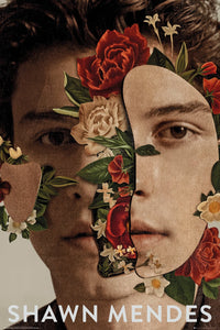 Shawn Mendes Flowers poster - egoamo.co.za