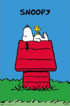Snoopy and Woodstock - Poster - egoamo.co.za