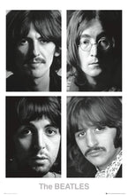 The Beatles 50th Anniversary Poster  egoamo.co.za posters