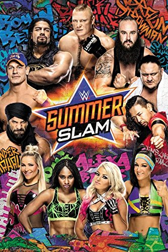 WWE Summer Slam - wrestling poster - egoamo.co.za