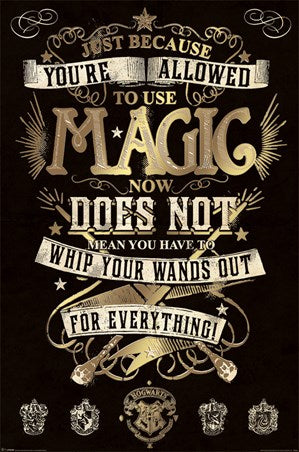 Harry Potter - Magic - Poster - egoamo.co.za