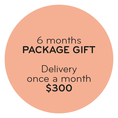 GIFT PACKAGE - 6 MONTHS