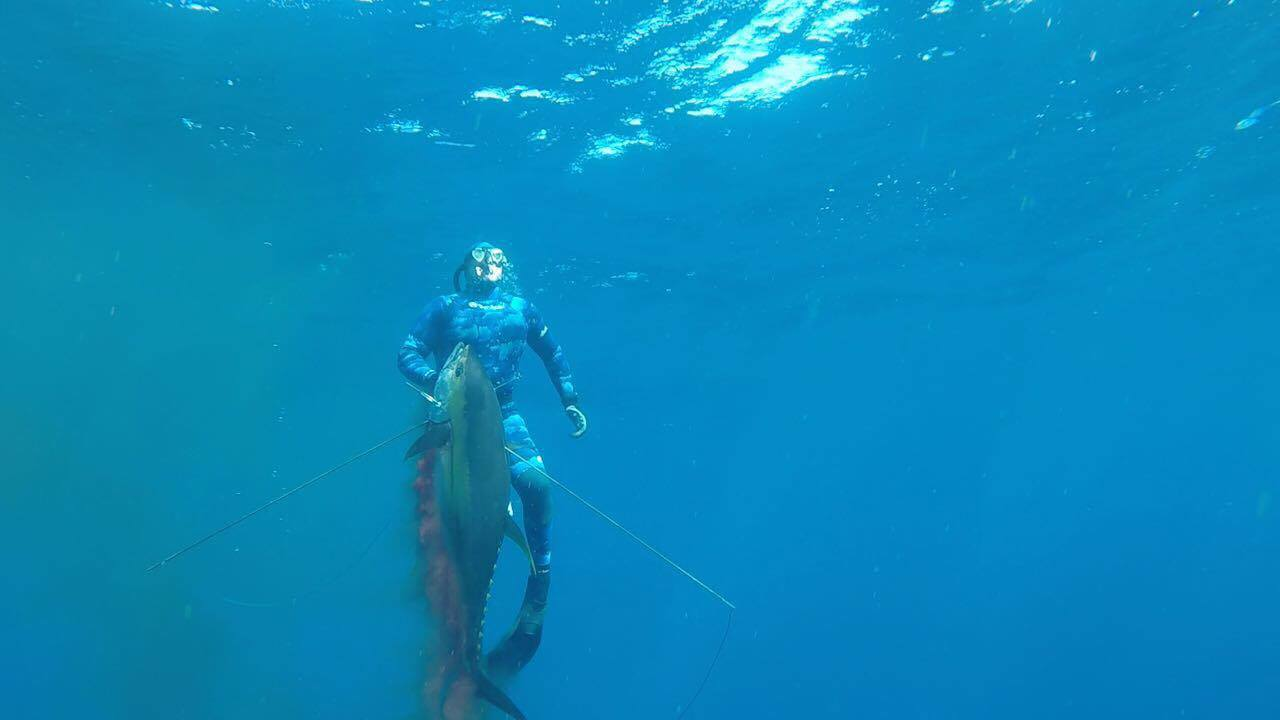 Rob Allen Bluewater Spearfishing Fishing Gear Blue Wetsuit Camo Ocean Hunting Diving Hartlyn Custom Bluewater Camo Rob Allen 2mm 3mm 2 Piece Waistband Pants Wetsuit Rob Allen Nylon 2mm Closed Cell Nylon Lining 3mm Open Cell Neoprene wetsuit Powertex Knee elbow pads hooded 2 Piece wetsuit