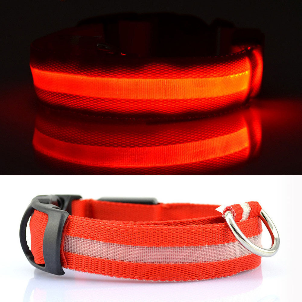 Martem Pet Collar Safety Belt-WORLDWIDE FREE SHIPPING