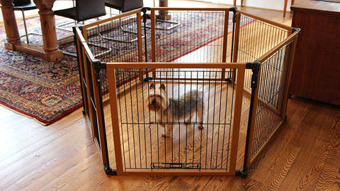 Cardinal Gates PFPG Perfect Fit Free Standing Pet Gate - PetGateCentral.com