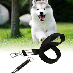 Dog Training And Barking Ultrasonic Whistle Controller