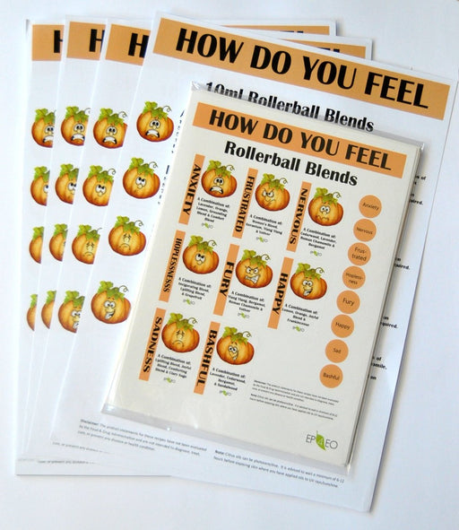 How Do You Feel Workshop Kit