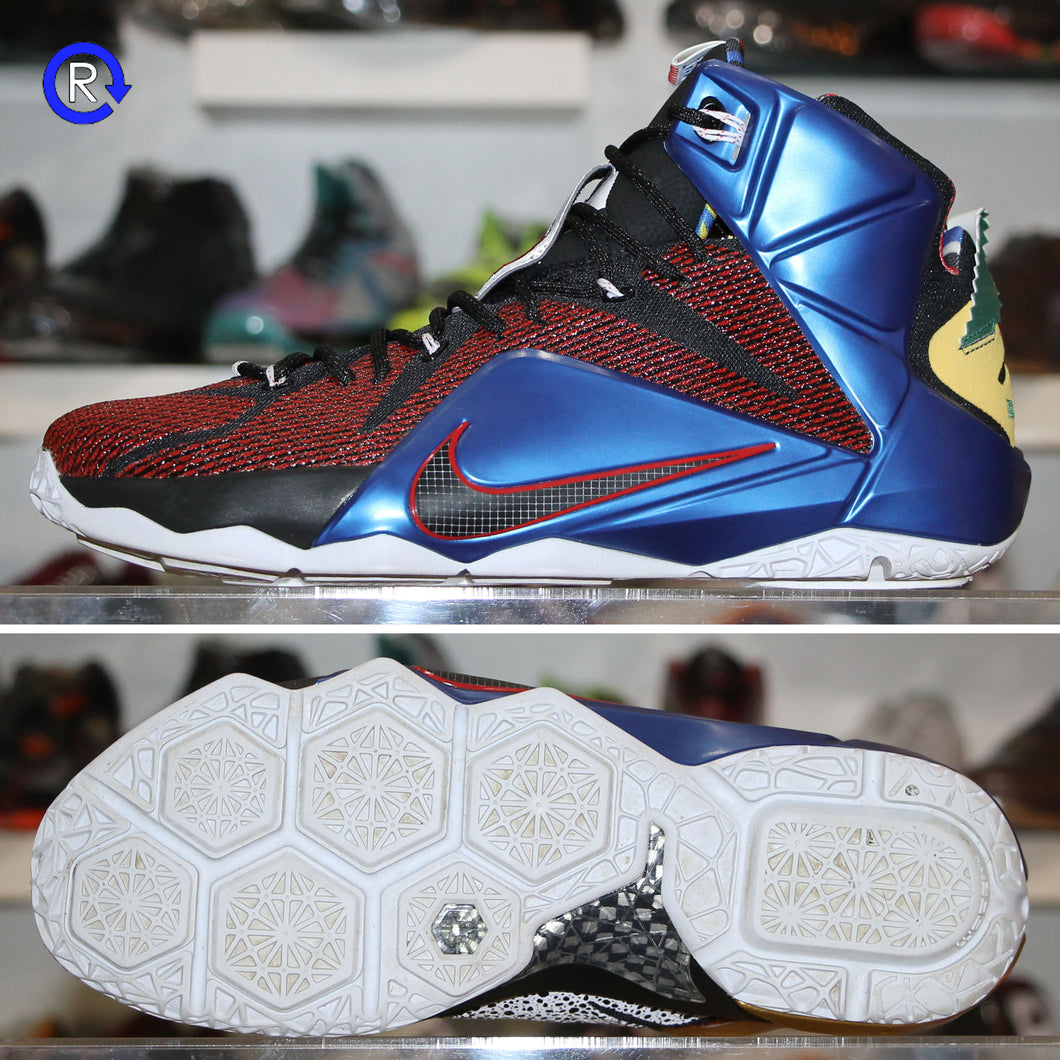 'What The' LeBron 12 SE (2015) | Size 12 Condition: 9.5/10.