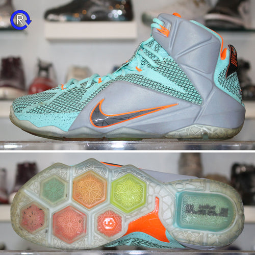 'NSRL' LeBron 12 (2014) | Size 9 Condition: 8.5/10.