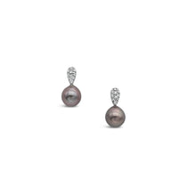 Load image into Gallery viewer, 18ct White Gold Stud Drop Earrings featuring Abrolhos Island Black Pearls