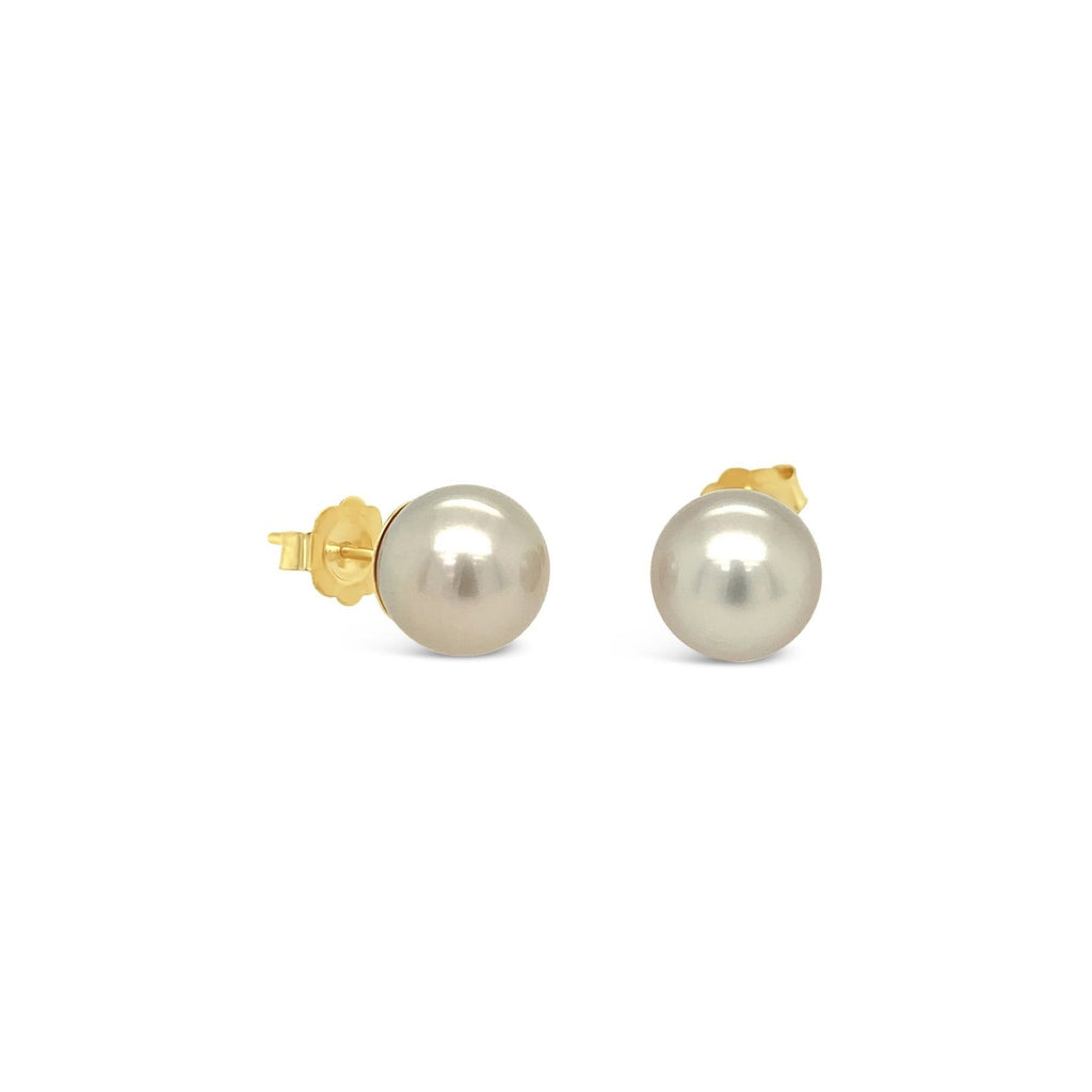 Abrolhos Black Pearl 18ct Yellow Gold Studs 10mm