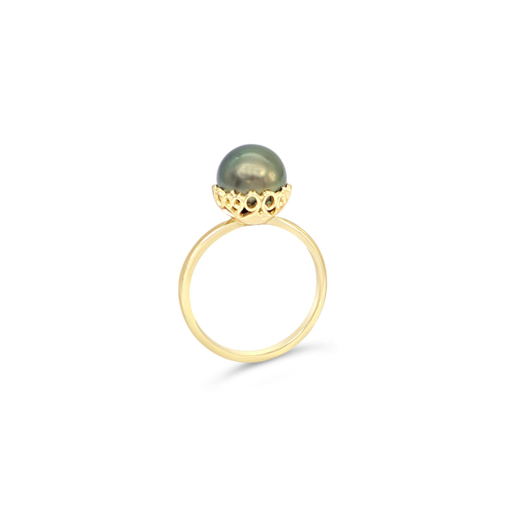 9ct Yellow Gold Filigree Bowl Ring with Abrolhos Island Black Pearl