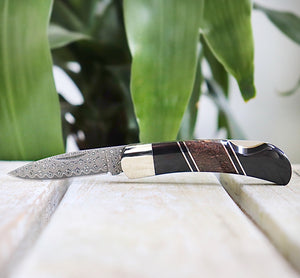 Dinosaur Bone & Jet Damascus Steel Lockback Knife
