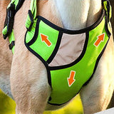 Brother Harness - Puppernaut Dog Products