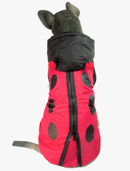 Ladybugging Around Coat - Puppernaut Dog Supplies