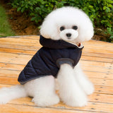 Moustache Hooded Winter Jacket - Puppernaut Dog Products