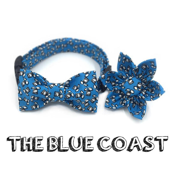 The Blue Coast - Puppernaut Dog Supplies