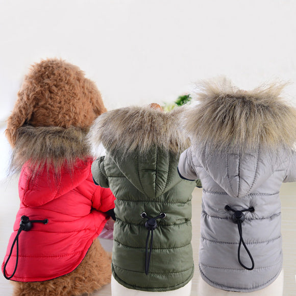 Warm Cotton-Padded jacket - Puppernaut Dog Products