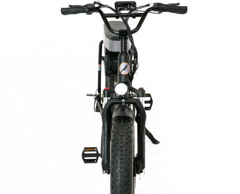 GreenBike Electric Motion - Mule - 2 Seater Fat Tire - 500w - Electric Bike Ridetique.com