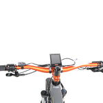 QuietKat 2020 - Quantum - 1000 & 750 w Electric Mountain Bike -  Ridetique.com
