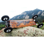 MBS Birds Comp 95 Mountainboard - Mountainboard Ridetique.com