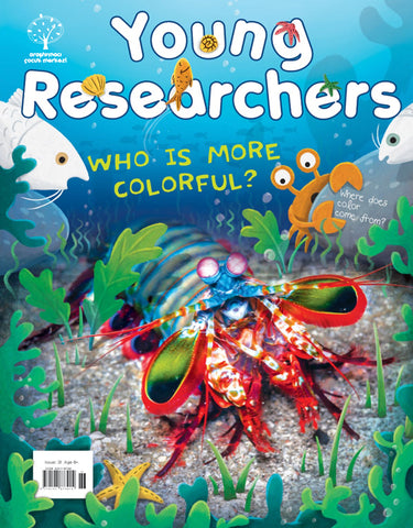 Issue 31 - Who is More Colorful?