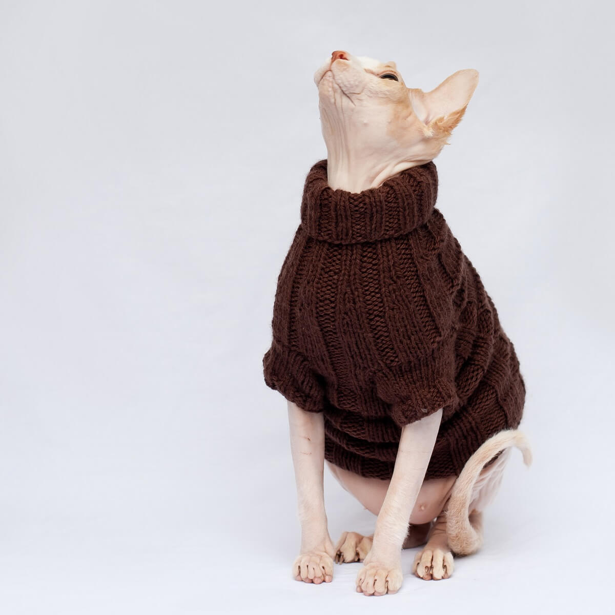 Heavenly Chunkiness hand knitted jumper for cats or small dogs.
