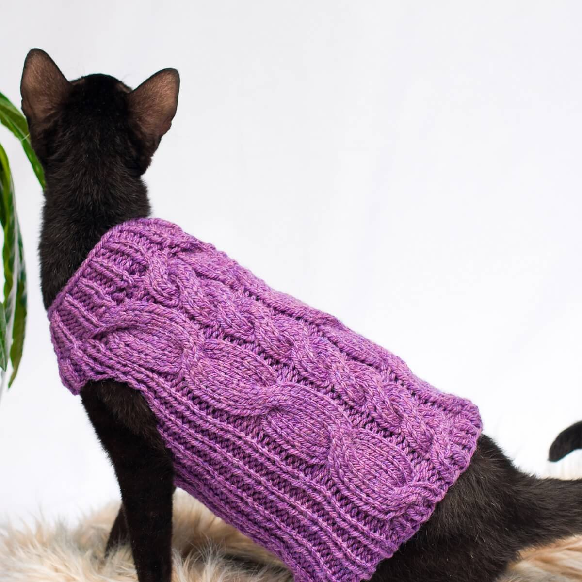 Sphynx cat sweater. Sphynx cat cardigan. Cat wear.