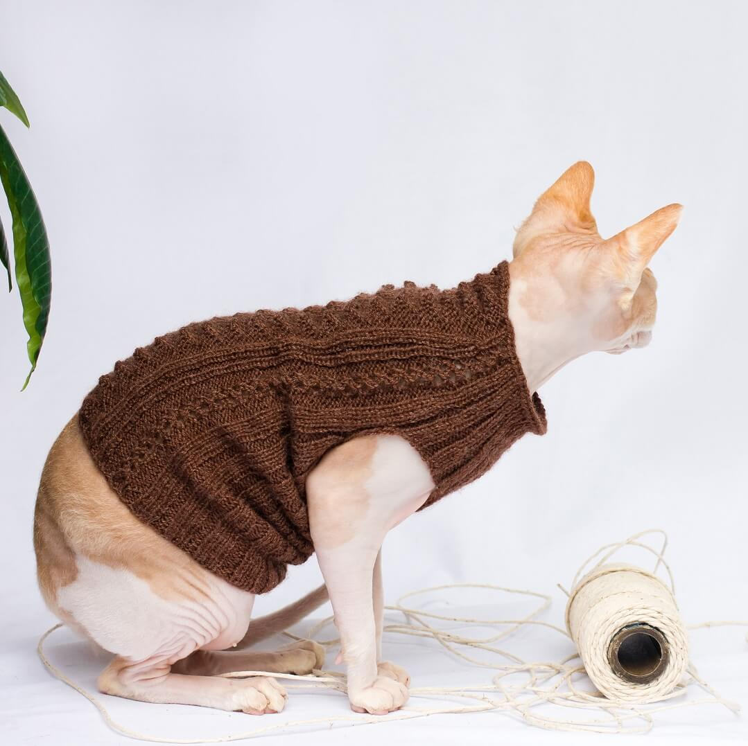 cat sweater with no sleeves in brown