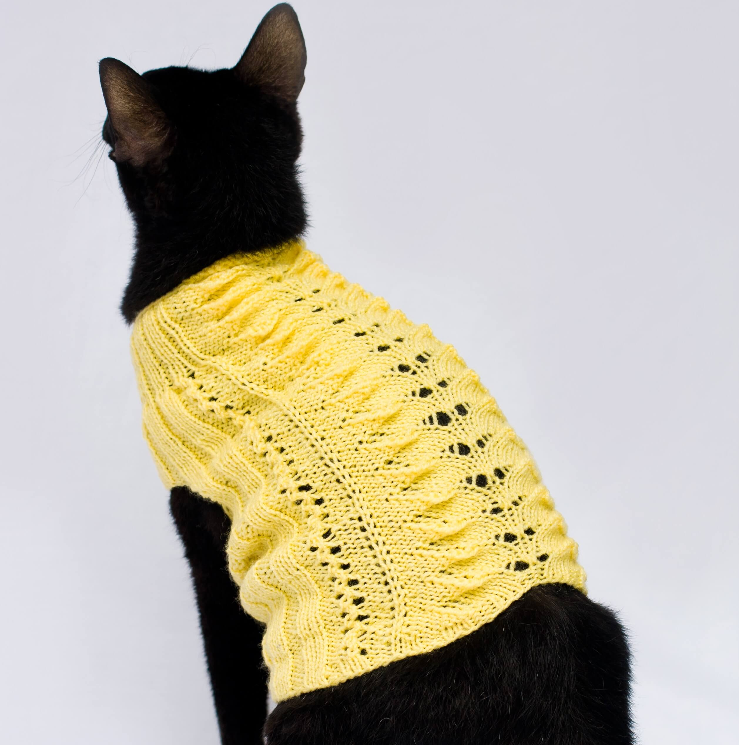 cat sweater with no sleeves in yellow