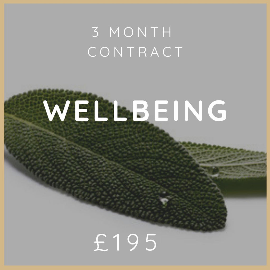 3 Month Wellbeing