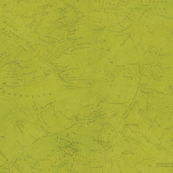 Papel  Green Map - Teal Map You are Here