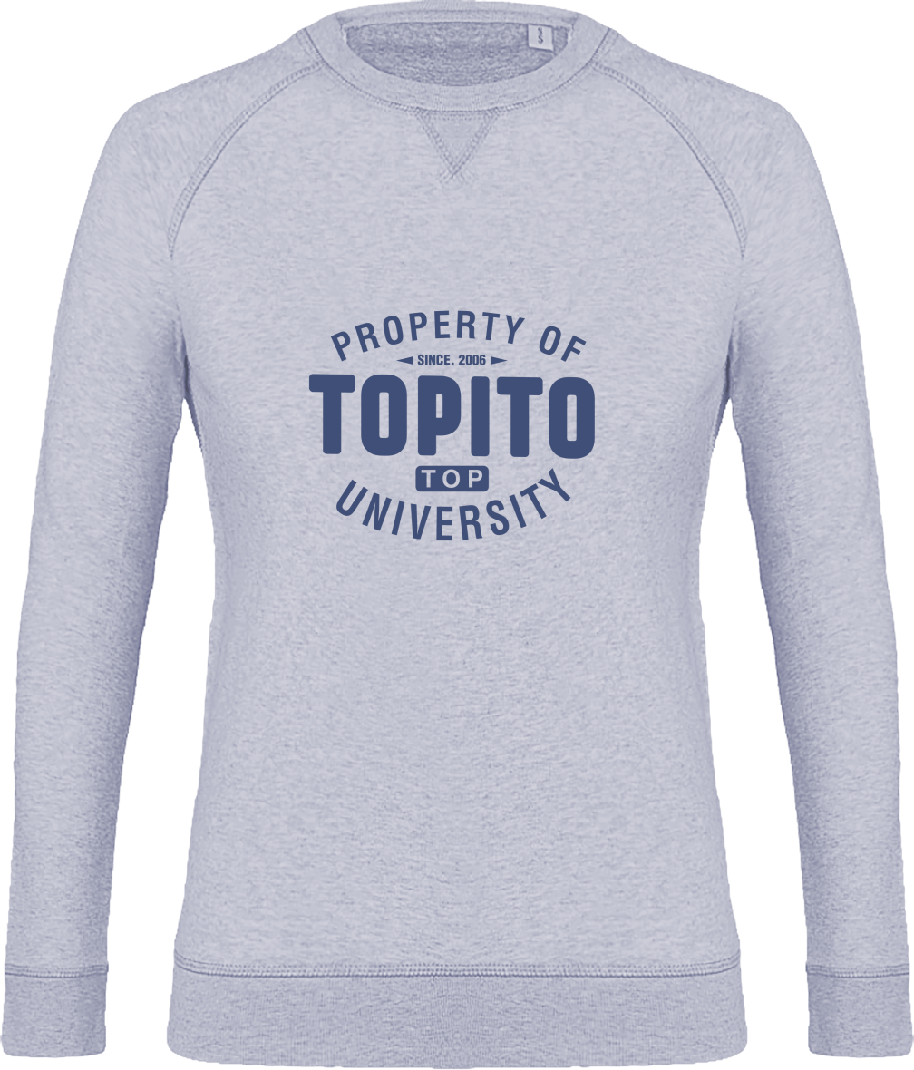 Pull Property of Topito