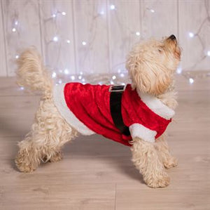 Dog Santa Suit / Santa Coat for your little best friend