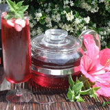 Hibiscus Powered Red Tea