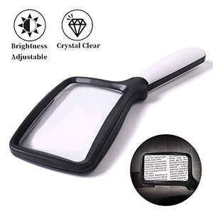 Hand-Held Lighted Reading Magnifying Glass
