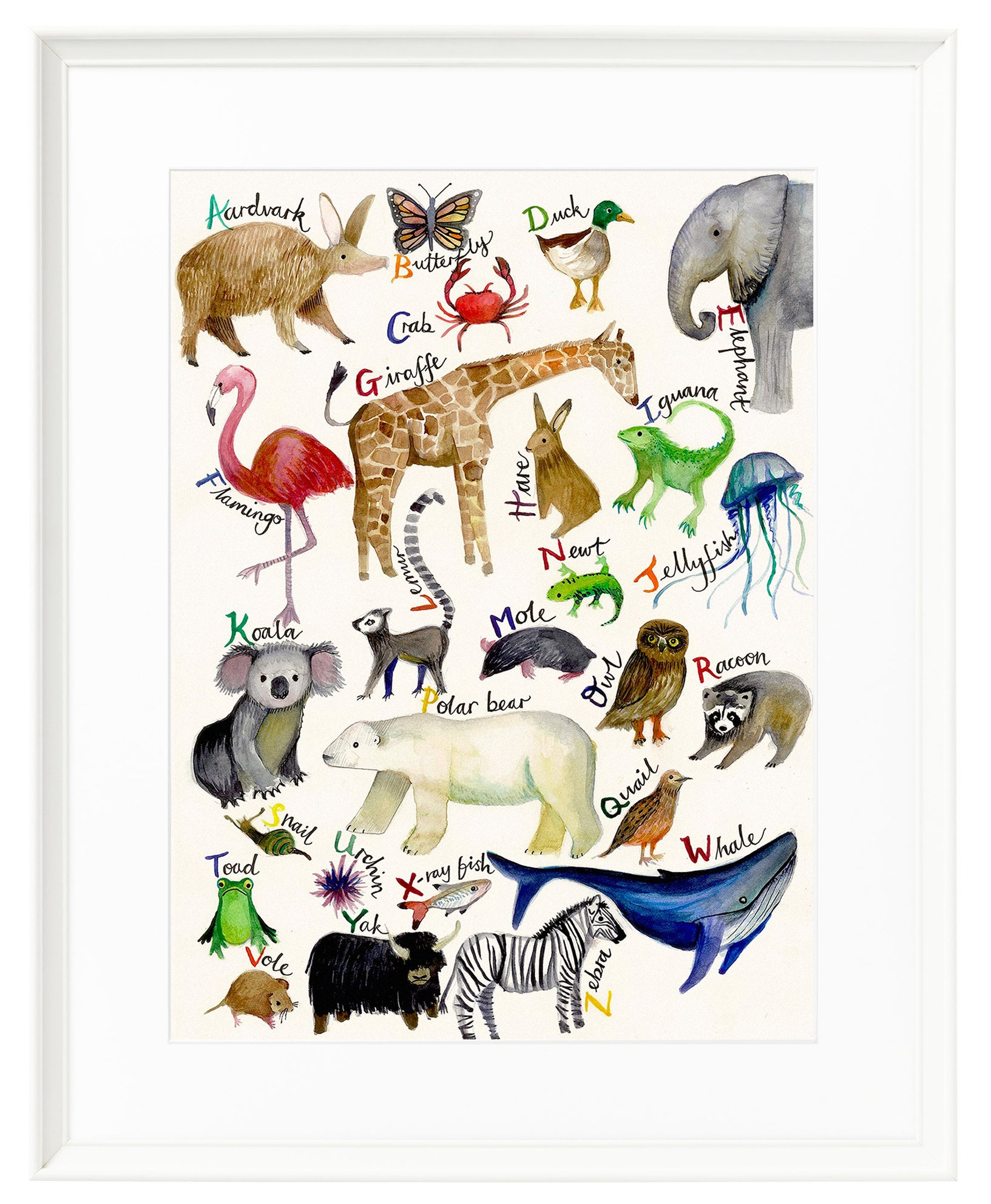 The A-Z of Animals