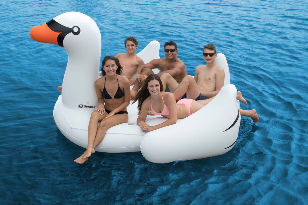 The Biggest Giant Swan