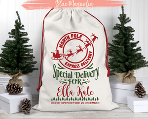 North Pole Express Delivery Santa Bag
