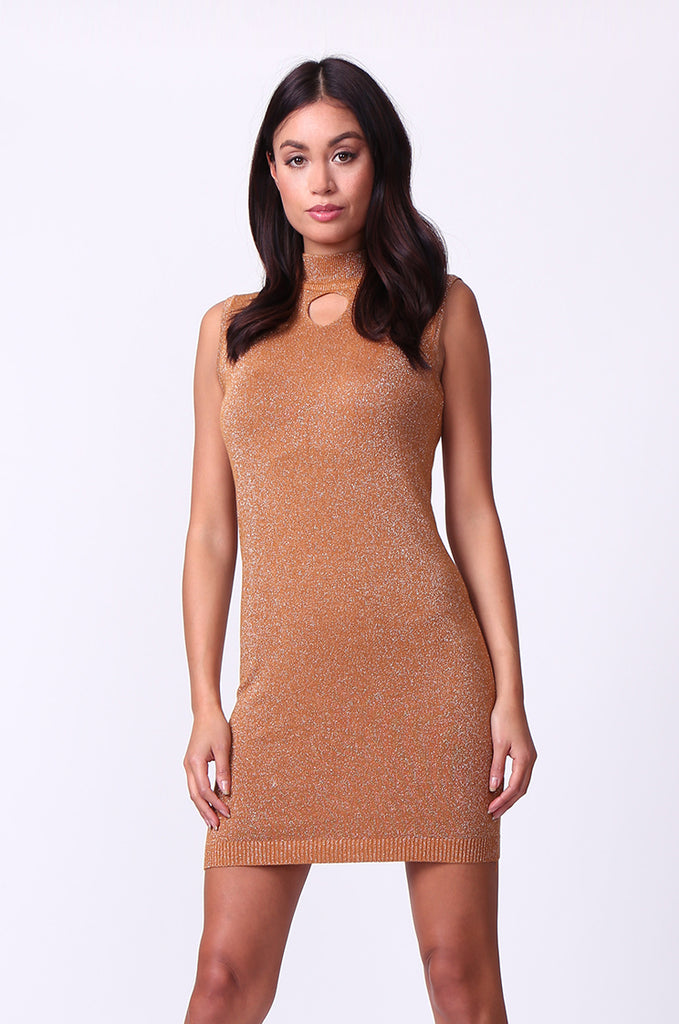 SP0127-BROWN METALLIC TURTLE NECK MINI DRESS view main view