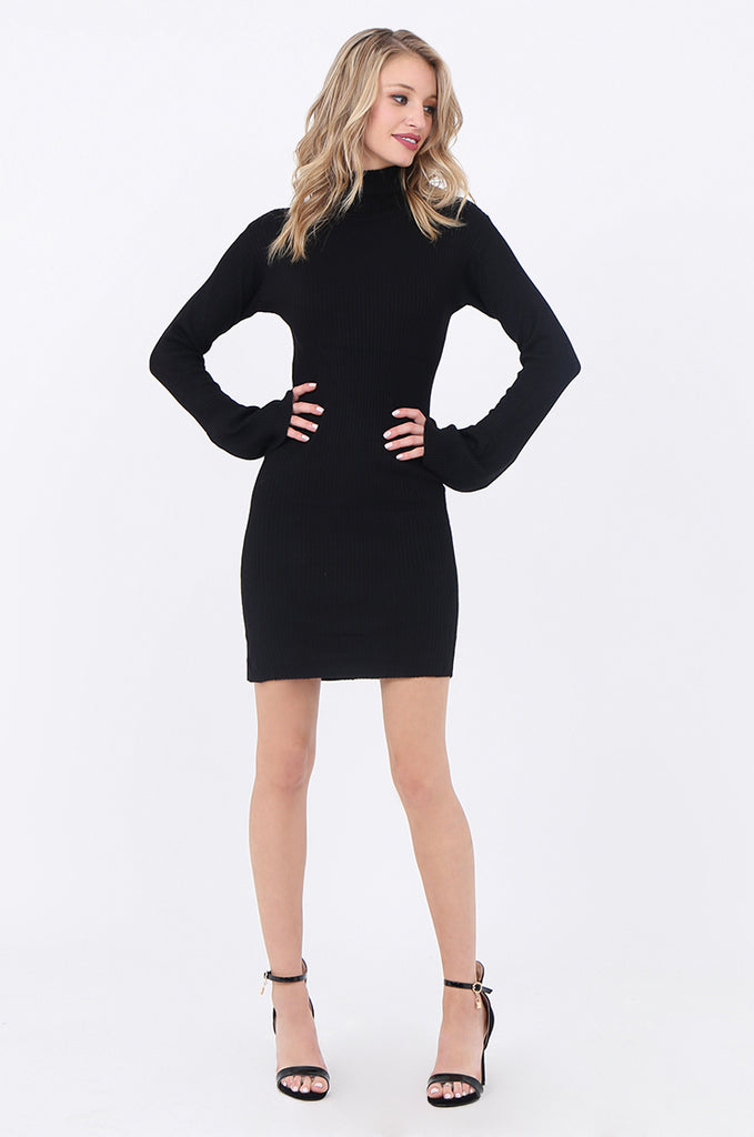 SF1744-BLACK TURTLENECK RIB KNIT DRESS view main view
